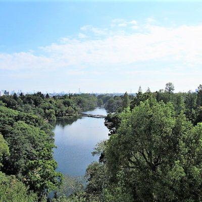 バルコニーからの眺望 井の頭公園が一望できます
